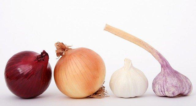 cebula-zdravje-dietetik.si